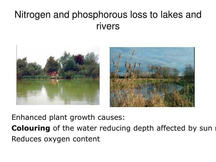 Nitrogen and phosphorous loss to lakes and rivers