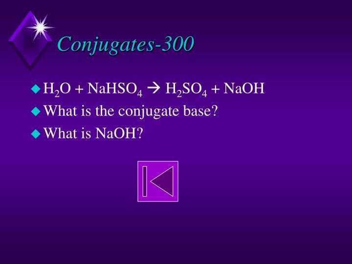 Conjugates-300