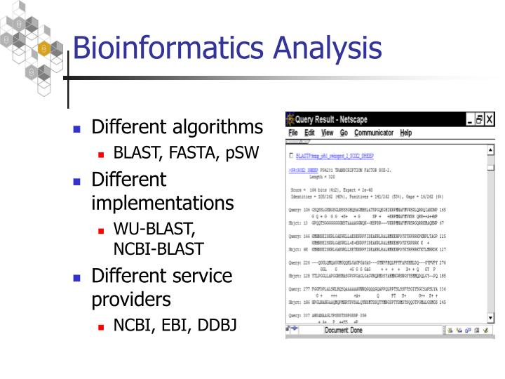 Bioinformatics Analysis