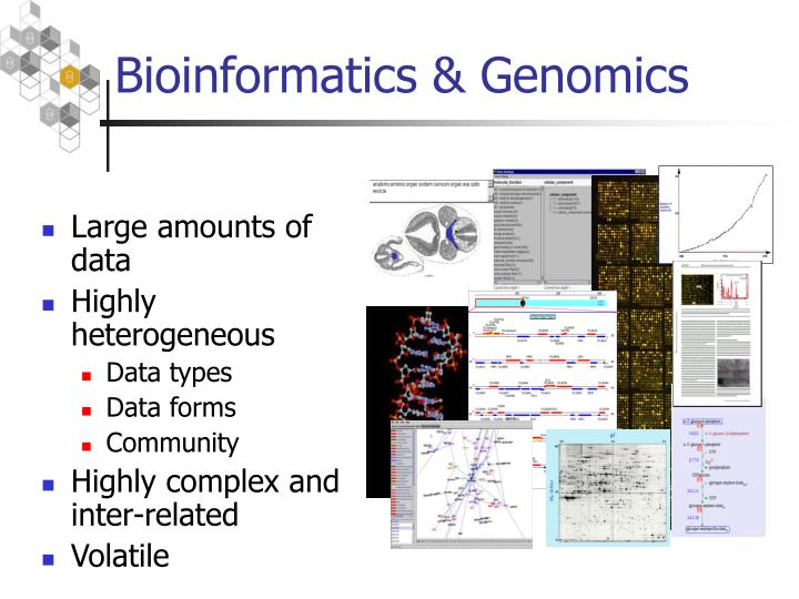 Bioinformatics genomics