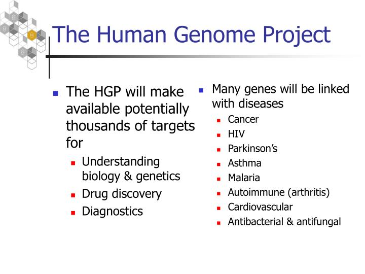 The HGP will make available potentially thousands of targets for
