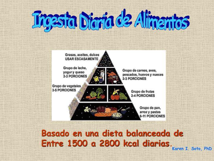 Ingesta Diaria de Alimentos