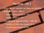 manilhas eb 51