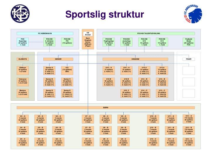 Sportslig struktur