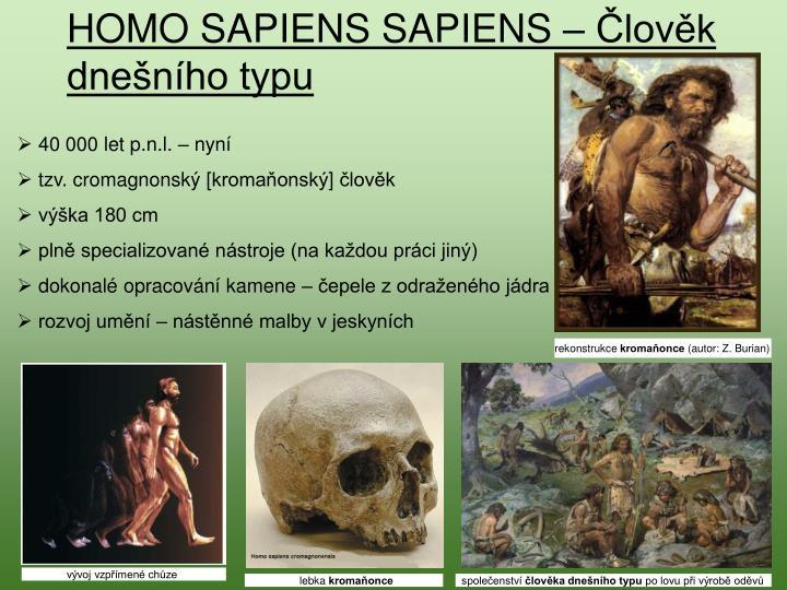 HOMO SAPIENS SAPIENS – Člověk dnešního typu