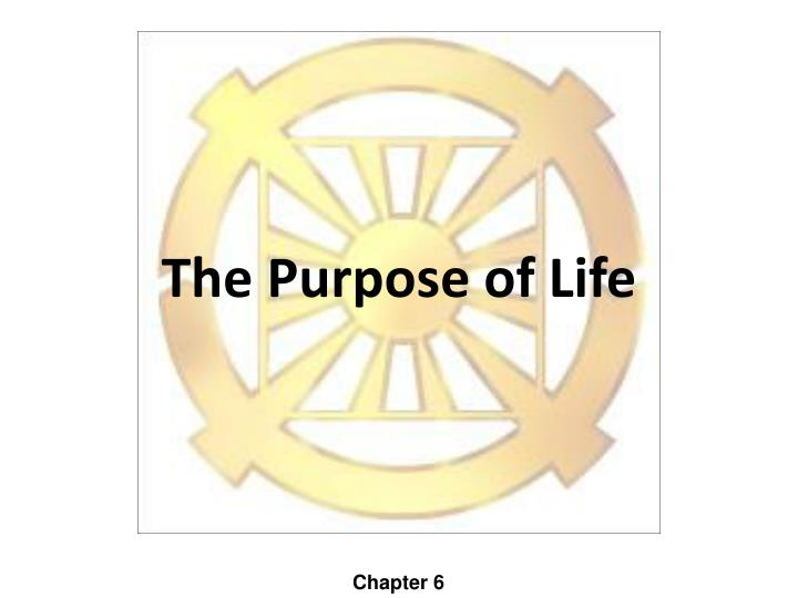 the purpose of life n.