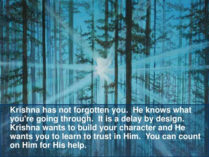 Krishna has not forgotten you.  He knows what you're going through.  It is a delay by design.  Krishna wants to build your character and He wants you to learn to trust in Him.  You can count on Him for His help.
