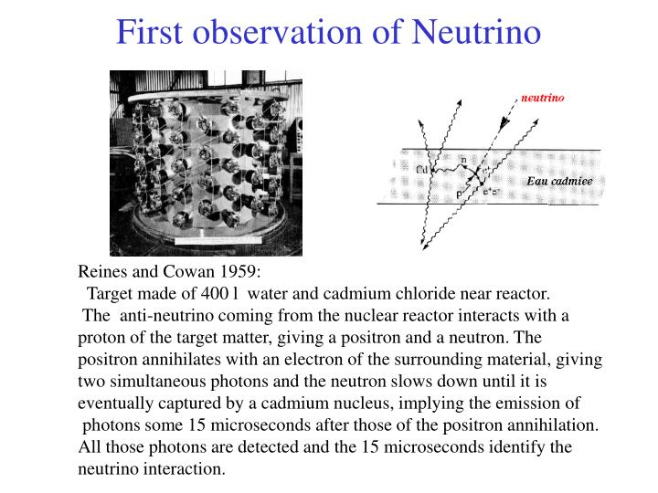 First observation of Neutrino