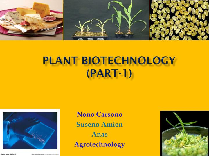 plant biotechnology part 1 n.