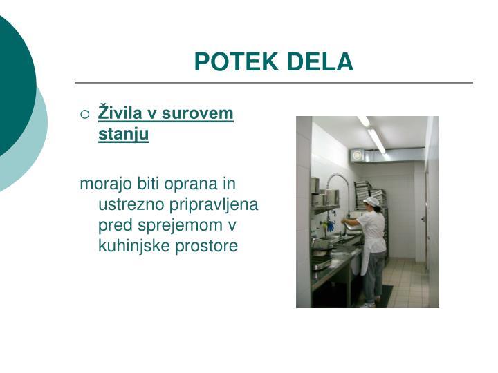 POTEK DELA
