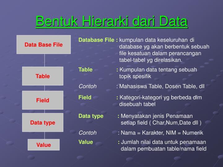 Bentuk Hierarki dari Data