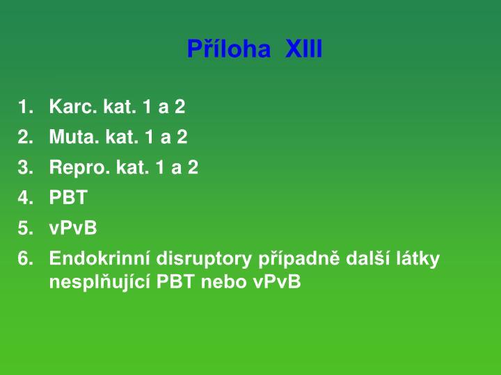 Příloha  XIII