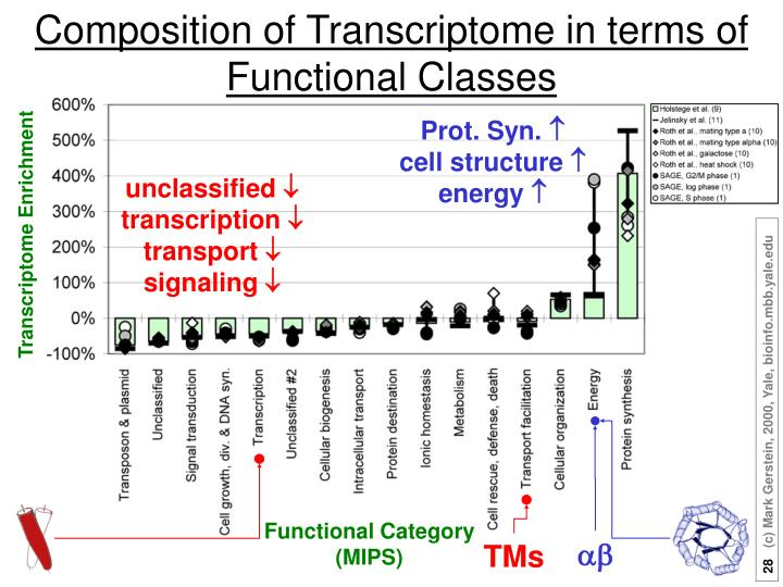 Composition of Transcriptome in terms of Functional Classes