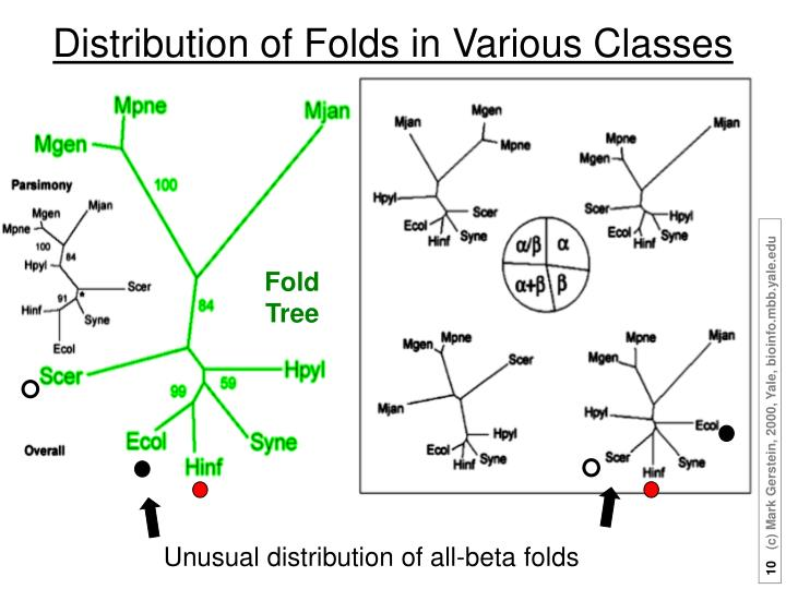 Distribution of Folds in Various Classes