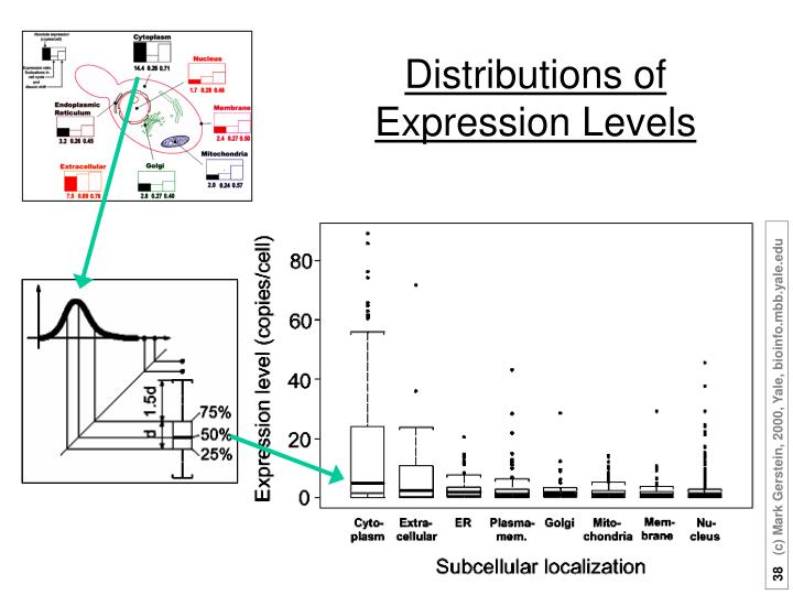 Distributions of Expression Levels