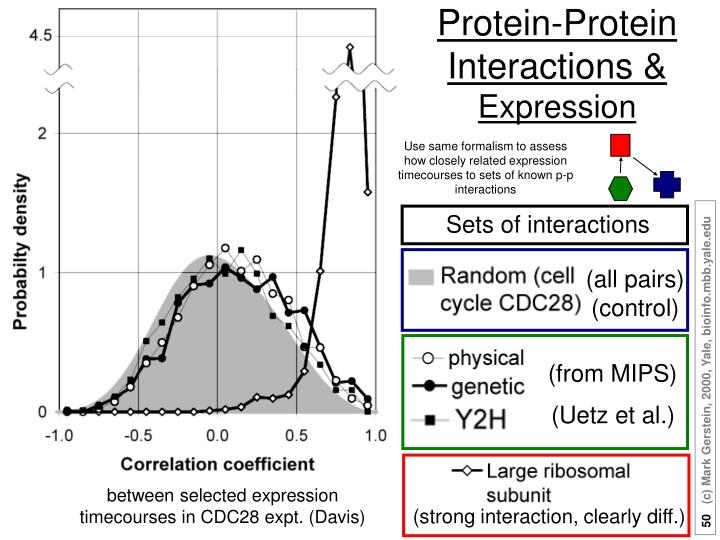 Protein-Protein Interactions &