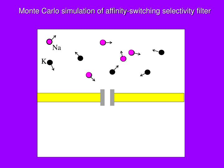 Monte Carlo simulation of affinity-switching selectivity filter