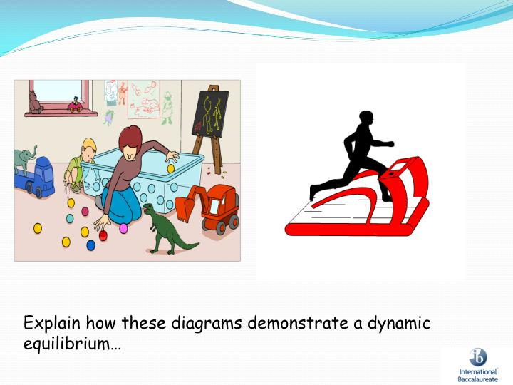 Explain how these diagrams demonstrate a dynamic equilibrium…