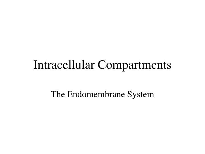 intracellular compartments n.