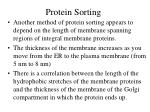 protein sorting2
