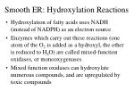 smooth er hydroxylation reactions1