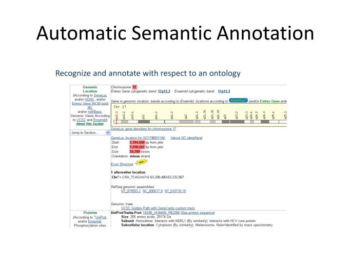 Automatic Semantic Annotation