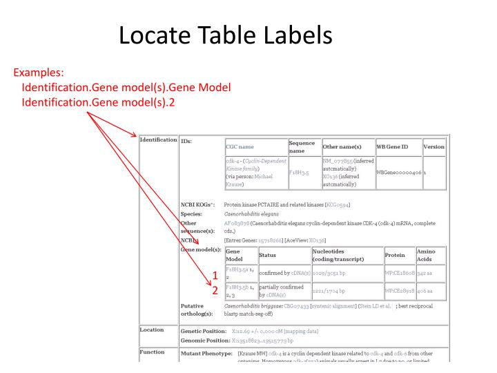 Locate Table Labels