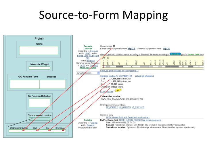 Source-to-Form Mapping
