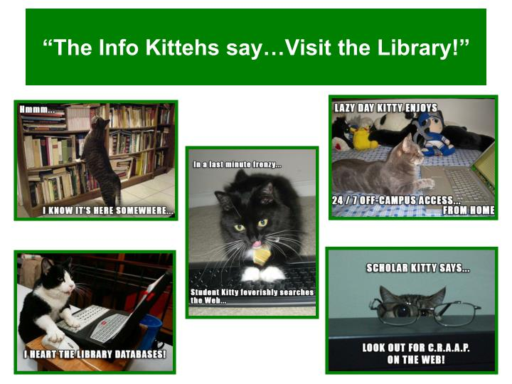 """The Info Kittehs say…Visit the Library!"""