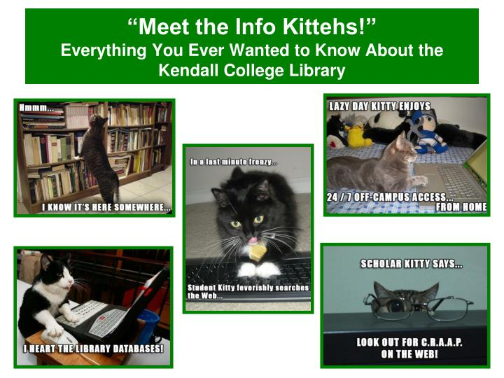 meet the info kittehs everything you ever wanted to know about the kendall college library n.