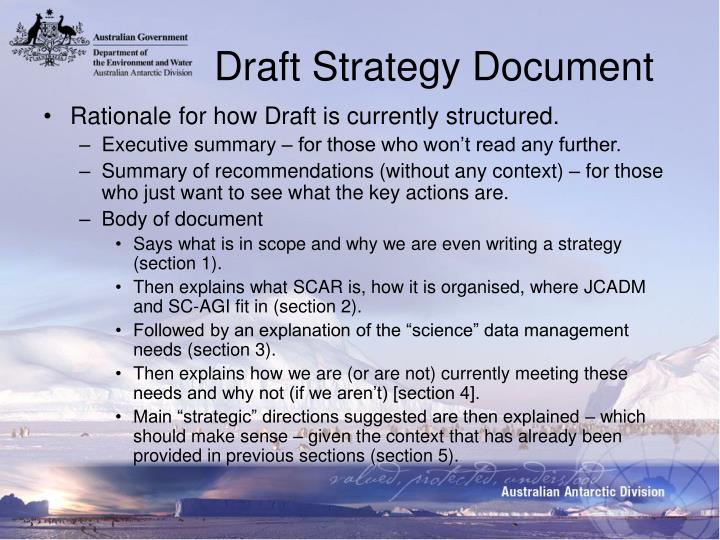 Draft Strategy Document