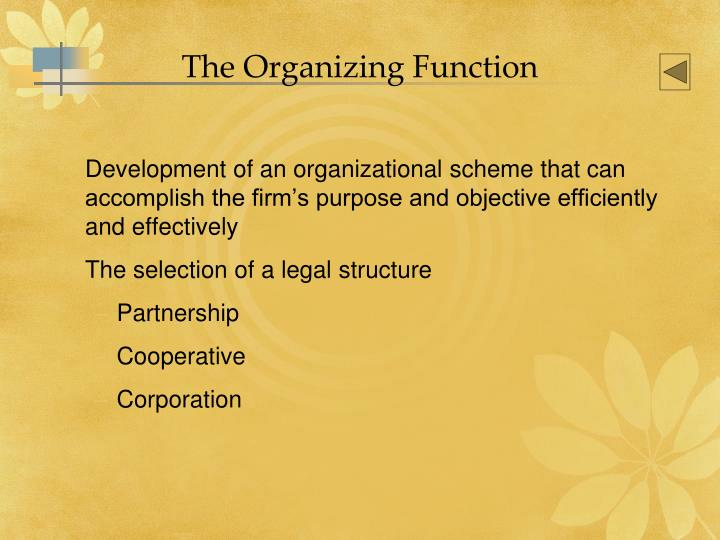 The Organizing Function