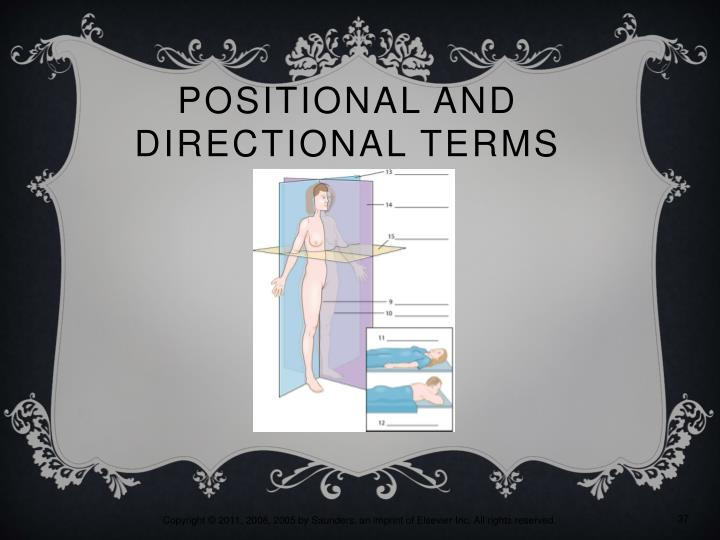 Positional and Directional Terms