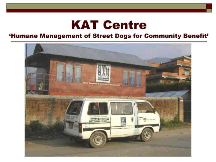Kat centre humane management of street dogs for community benefit