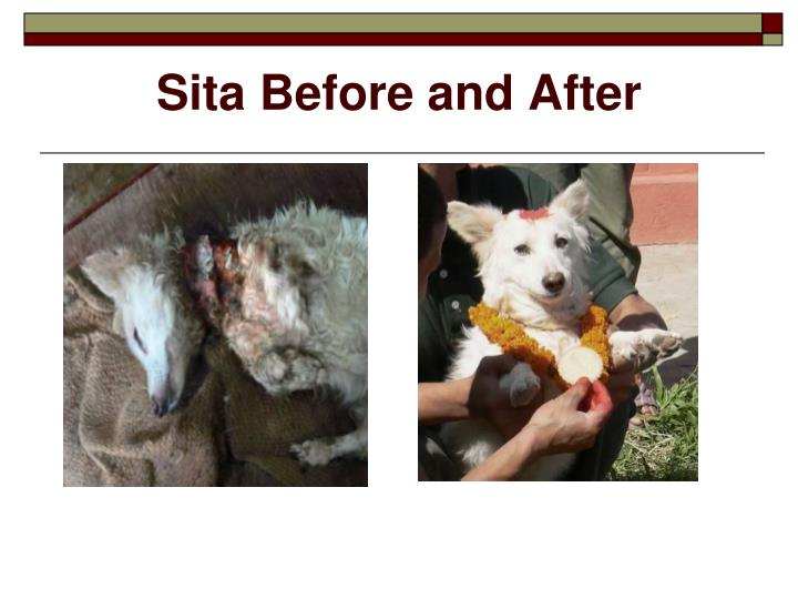 Sita Before and After