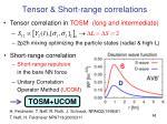 tensor short range correlations1