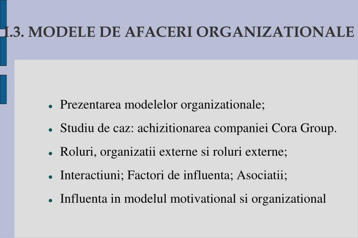 I.3. MODELE DE AFACERI ORGANIZATIONALE