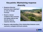 key points maintaining response diversity