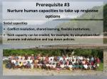 prerequisite 3 nurture human capacities to take up response options