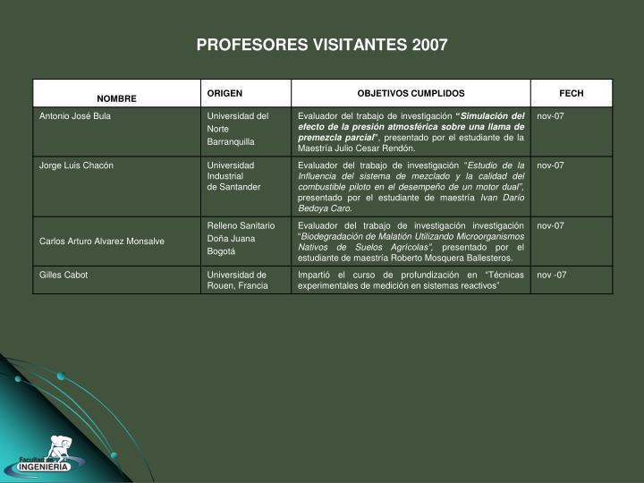 PROFESORES VISITANTES 2007