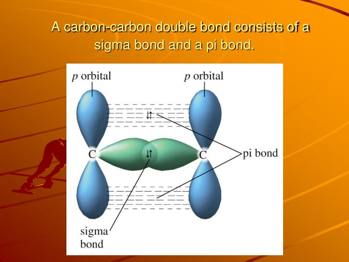 carbon carbon multiple bond 542 chapter 14 covalent bonding: orbitals each carbon atom in c2h2 is sp hybridized since each carbon atom is surrounded by two.