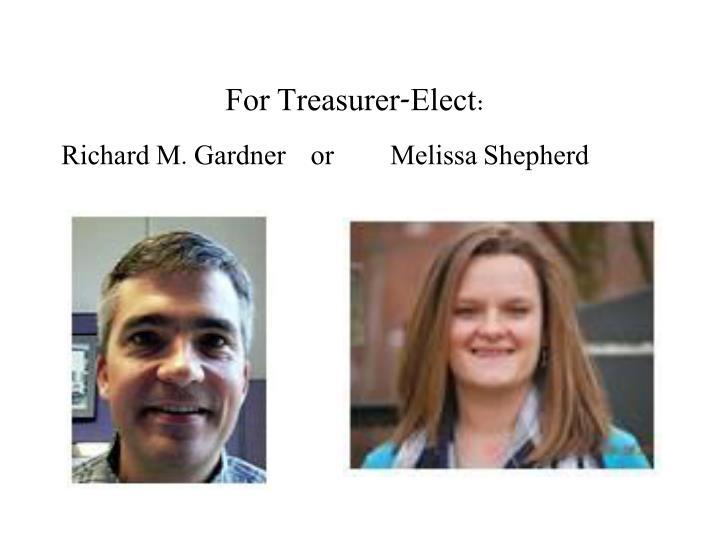 For Treasurer-Elect: