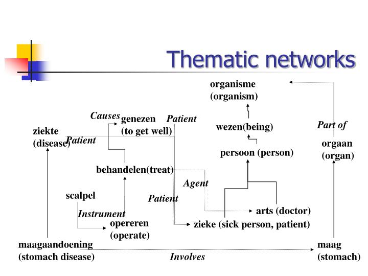 Thematic networks