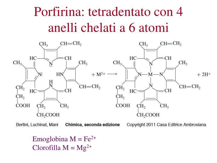 Porfirina: tetradentato con 4 anelli chelati a 6 atomi
