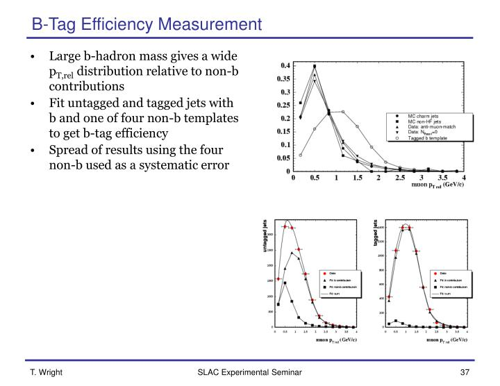 B-Tag Efficiency Measurement