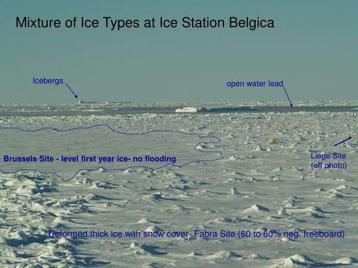 Mixture of Ice Types at Ice Station Belgica