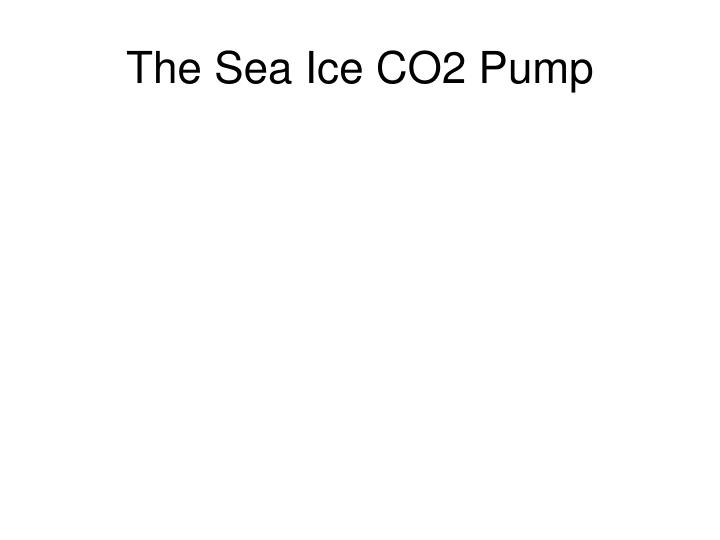 The Sea Ice CO2 Pump