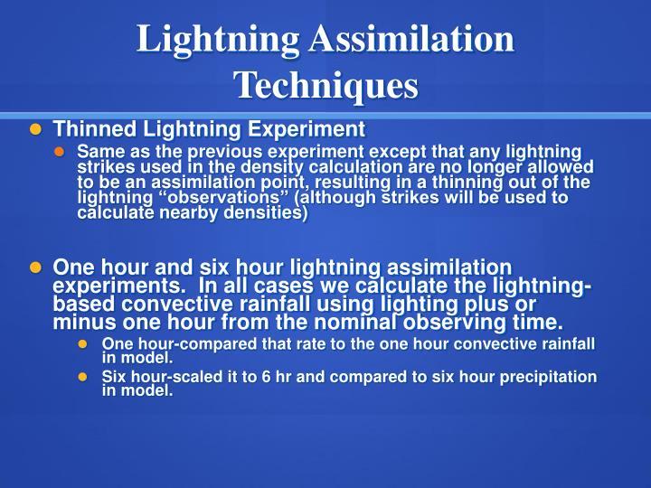 Lightning Assimilation Techniques