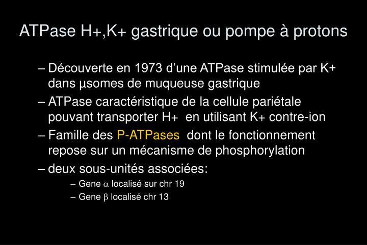 ATPase H+,K+ gastrique ou pompe à protons