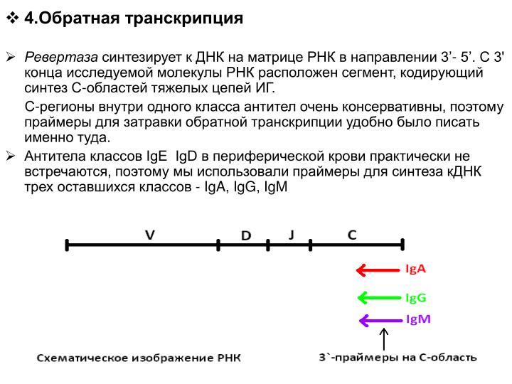 4.Обратная транскрипция